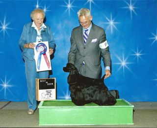 2011-best_in_show_kenosha_kennel_club2
